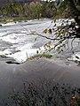 Парк природе ријека Уна 84.jpg