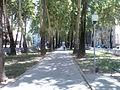 Проспект Рудаки. Душанбе. 2008.jpg