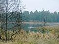 Пруд на реке Уша. Красное. Pond on the river Usha. - panoramio.jpg