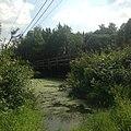 Річка Лісна з деревяним мостом.jpg