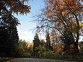 Стрийський парк, осінь 10.jpg