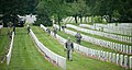 """""""Flags in"""" with The Old Guard in Arlington National Cemetery (17330681473).jpg"""
