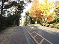 名古屋大学 - panoramio (22).jpg