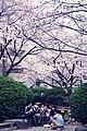 大阪大学豊中キャンパス浪高庭園 (6949048360).jpg