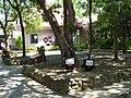 竹東旅遊服務中心 Zhudong Tourist Service Center - panoramio.jpg