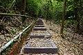 竹葉步道 Bamboo Trail - panoramio.jpg