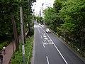 陸橋の上 吉祥寺駅方向を望む - panoramio.jpg