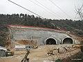 051 (l'area sopra i futuri tunnel di Cattinara) 39.jpg