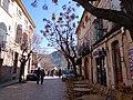 07170 Valldemossa, Illes Balears, Spain - panoramio (31).jpg