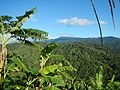 09673jfWatershed Forests San Mateo Lorenzo Hilltop Norzagaray Bulacanfvf 23.JPG