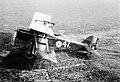 100 years of the RAF MOD 45163653.jpg