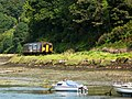 150238 Looe Valley.JPG
