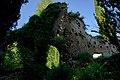 150510 180401 Giardino di Ninfa.jpg