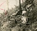 1957 Cebu Douglas C-47 crash site.jpg
