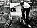 1966. Dave McComb with hygrothermograph and shelter used for Douglas-fir tussock moth research. Corral Creek Area. Modoc National Forest, California. (36796100892).jpg