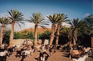 Ribeira da Vinha Settlement in São Vicente, Cape Verde