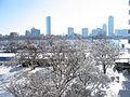 2005 Boston89009210.jpg
