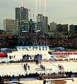 2009 Winter Classic (cropped1).jpg