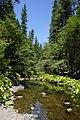 2013, View W, Hayfork Creek, Gemmill Gulch Picnic Area - panoramio.jpg
