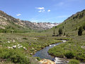 2014-06-23 14 18 53 View up Lamoille Creek from the Terraces Picnic Site in Lamoille Canyon, Nevada.JPG
