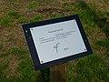 20140827 Monument Oerwold De Onlanden Roderwolde Dr NL (3).jpg