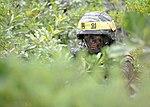 2015.7.10. 해병대 연평부대-차단선점령훈련 10th, june, 2015, YP Unit ROKMC-Training of interdiction (19661108746).jpg