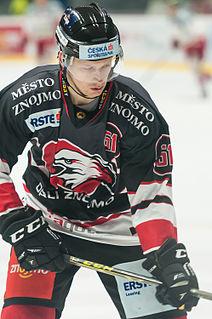 Jan Šeda (ice hockey) Czech ice hockey player