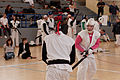 20150412 French Chanbara Championship 127.jpg