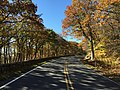 2016-10-25 11 16 55 View south along Shenandoah National Park's Skyline Drive just south of the Thorofare Mountain Overlook in Madison County, Virginia.jpg