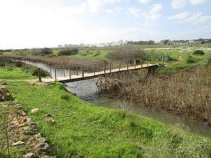 Alcantarilha River - Footbridge over the Alcantarilha river in the rivers saltmarshes