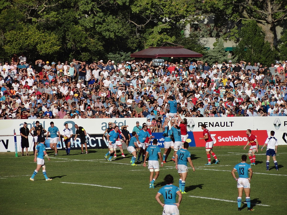 rugby world cup 2019 - photo #5