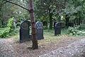 2335viki Cmentarz Żydowski na Ślężnej. Barbara Maliszewska.jpg