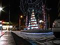 25 12 2009 Lights of Christmas (4260622340).jpg