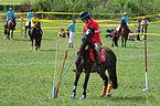 4ème manche du championnat suisse de Pony games 2013 - 25082013 - Laconnex 87.jpg