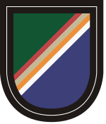 75 Ranger Regiment Regimental Flash.svg