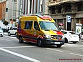 8490 Samur - Flickr - antoniovera1.jpg