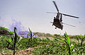 A Royal Air Force Chinook Helicopter Leaves with a Casualty in Afghanistan MOD 45153206.jpg