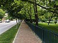 A Street and a park in Eskisehir.jpg