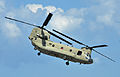 A U.S. Army CH-47 Chinook helicopter, assigned to the 159th Combat Aviation Brigade, 101st Airborne Division, prepares to land during air assault demonstration training at Campbell Army Airfield aboard Fort 120807-A-SG577-009.jpg