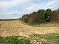 A field-woodland boundary - geograph.org.uk - 1215897.jpg