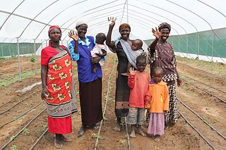 Gender and food security