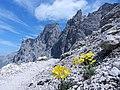 A tutti gli amanti della montagna - panoramio.jpg