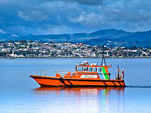 Port of Tauranga - Pilot boat from the port of Tauranga