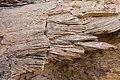 Abo Formation laminated sandstone - Flickr - aspidoscelis (2).jpg