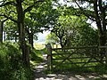 Access gate from the A470 to the No 8 National Cycle Route - geograph.org.uk - 511297.jpg