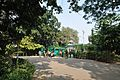 Acharya Jagadish Chandra Bose Indian Botanic Garden - Howrah 2011-01-08 9891.JPG