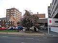 Across Brassington Avenue, Sutton Coldfield - geograph.org.uk - 1858881.jpg