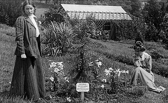 Annie Kenney - Adela Pankhurst (standing) and Kenney, pictured in 1909 beside a tree planted by Emmeline Pankhurst