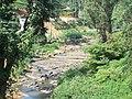Agra Oya at Lindula - panoramio (2).jpg