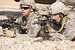 Air assault training at Forward Operating Base Loyalty DVIDS153968.jpg
